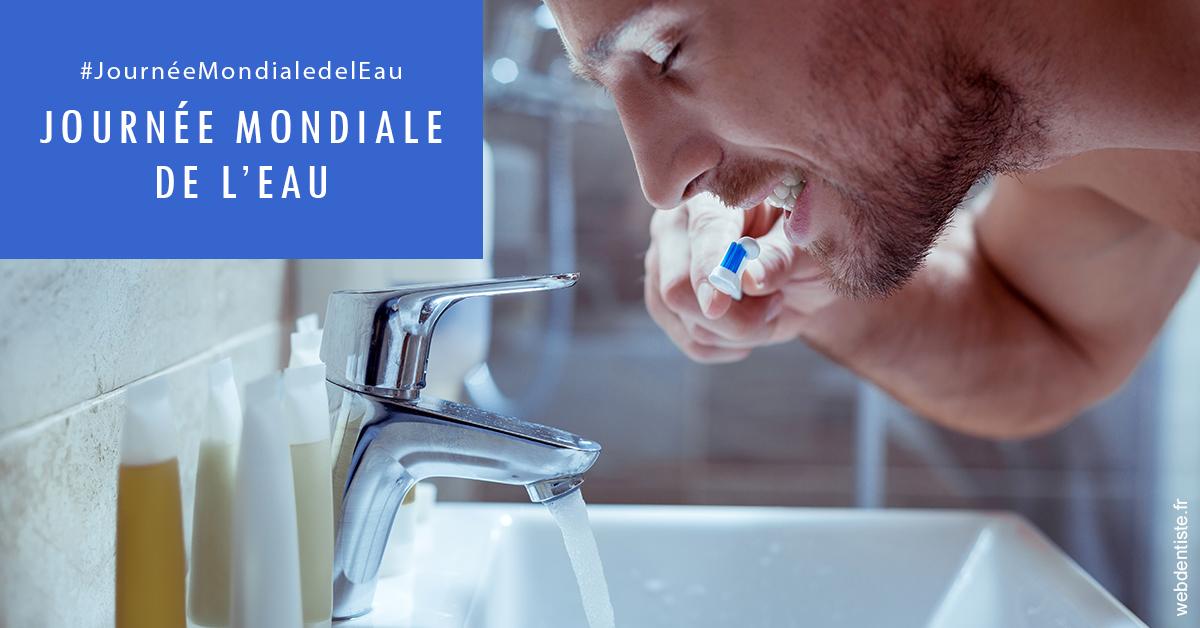 https://dr-patrice-gasser.chirurgiens-dentistes.fr/Journée de l'eau 2