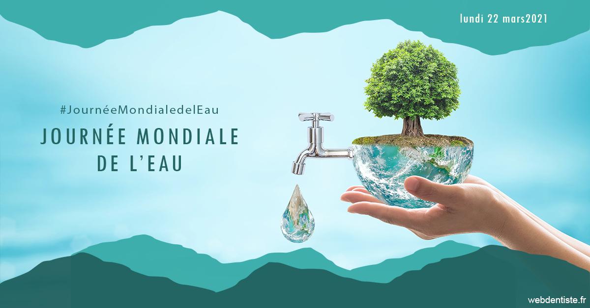https://dr-patrice-gasser.chirurgiens-dentistes.fr/Journée de l'eau 1
